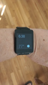 LG G Watch in sleep mode